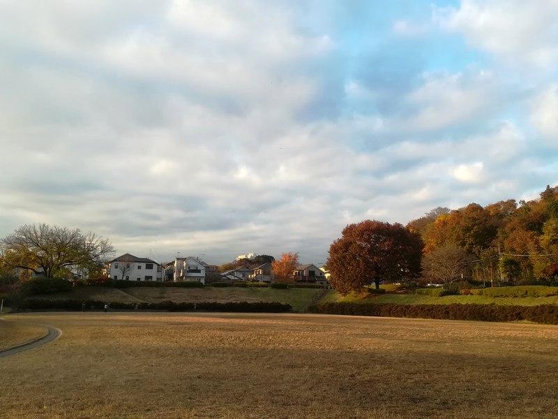 武蔵野公園の開放感あふれる広場