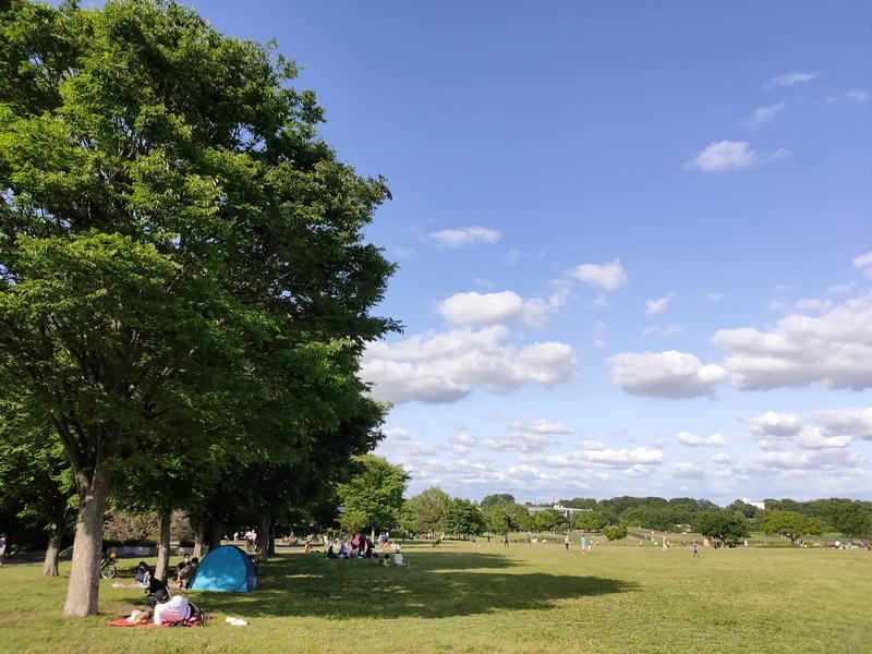 武蔵野の森公園の広場