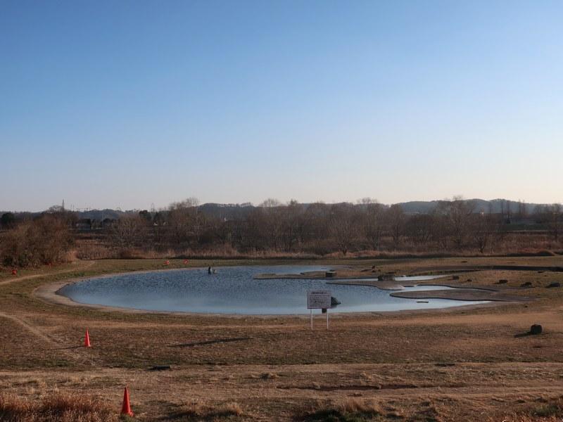 冬の多摩川親水公園 東京湾を模した池